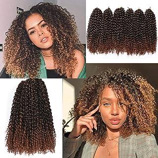 12 Inch Short Passion Twist Hair Marlybob Crochet Hair 6 Small Bundles Kinky Curly Crochet Hair Short Crochet Braids Jerry...