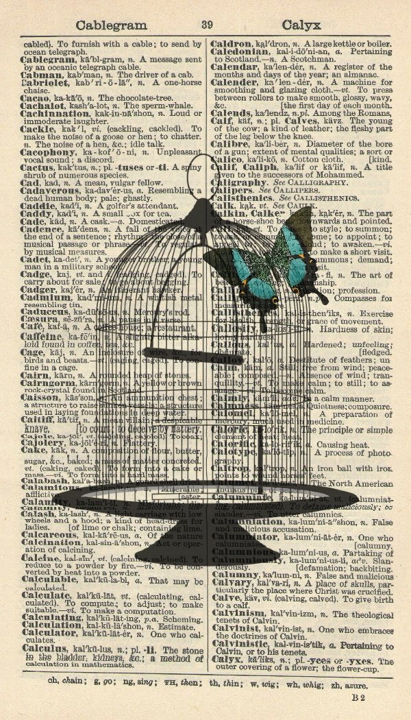 Birdcage Art Print - Butterfly S Vintage Limited time trial Max 90% OFF price