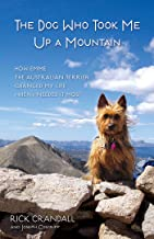 The Dog Who Took Me Up a Mountain: How Emme the Australian Terrier Changed My Life When I Needed It Most