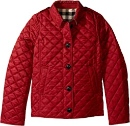 Burberry Kids, Coats & Outerwear, Girls | Shipped Free at Zappos : burberry kids quilted jacket - Adamdwight.com