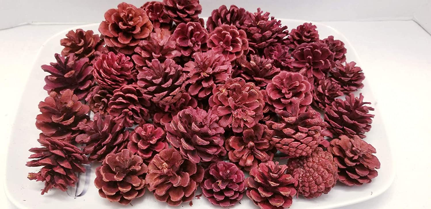 Little Valley Short Needle Red Pinecone - Large 1 lb Bag - Perfect for Bowl Fillers, Fall, Winter