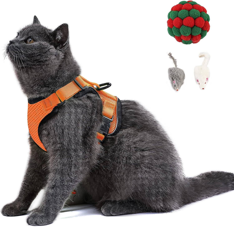 Demigreat Cat Minneapolis Mall Harness - Ranking TOP10 Escape w Kitten Proof Adjustable