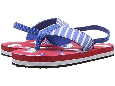 Hatley Kids Limited Edition Flip Flops (Toddler/Little Kid) (Beach Cruisin) Boys Shoes