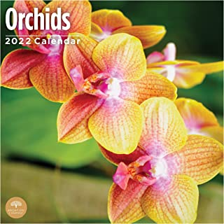 2022 Orchids Wall Calendar by Bright Day, 12 x 12 Inch, Floral Flower Beautiful
