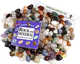 Dancing Bear Tumbled Polished Natural Gem Stones 2 Pounds (lbs) + Educational Color ID Sheet & 27 Page Rock & Mineral Identification Book. Average Stone Size 1 inch, Limited Edition