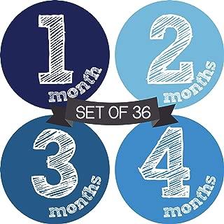 Baby Monthly Milestone Stickers Boy - Baby Milestone Stickers Boy - Baby Monthly Stickers Boy - Baby Month Stickers for Baby Boy - Baby Months of The Year Stickers - Newborn Monthly Baby Stickers