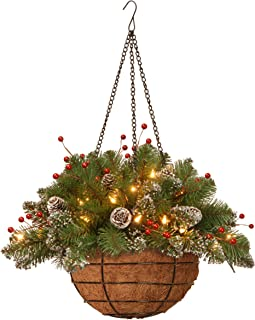 National Tree 20 Inch Glittery Mountain Spruce Hanging Basket with Red Berries, White Tipped Cones and 35 Battery Operated Warm White LED Lights (GLM1-300-20H-B1)