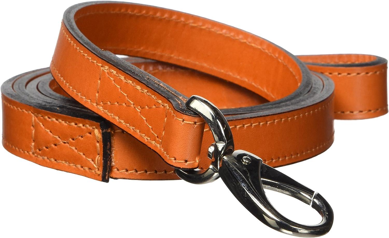 Hartman & pink 14378 Plain Nickel Plated Dog Lead, 3 4Inch, orange