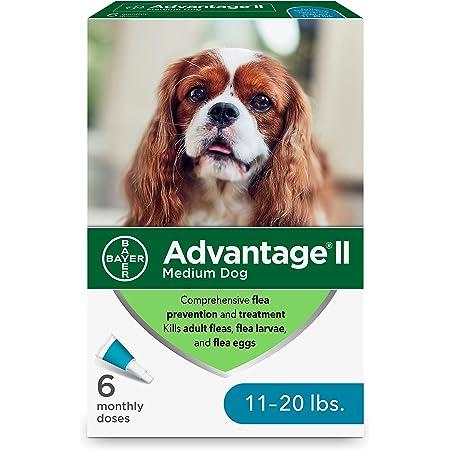 Tratamiento tópico contra pulgas de perros Bayer Advantage II, gris