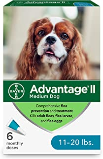 Bayer Advantage II Dog 11-20 lbs 6 Month Treatment