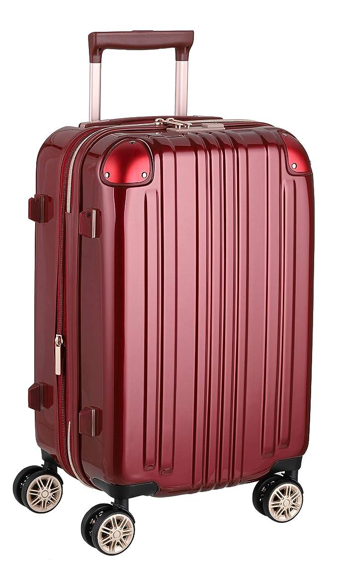 スーツケース ファスナータイプ ダブルキャスター 鏡面ボディ TSAロック 軽量 機内持込 Sサイズ