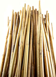 Grower's Solution Bamboo Stakes - Natural - (H) 5' x (D) 7/16