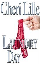 Laundry Day: *a Short & Sweet Romantic Encounter*