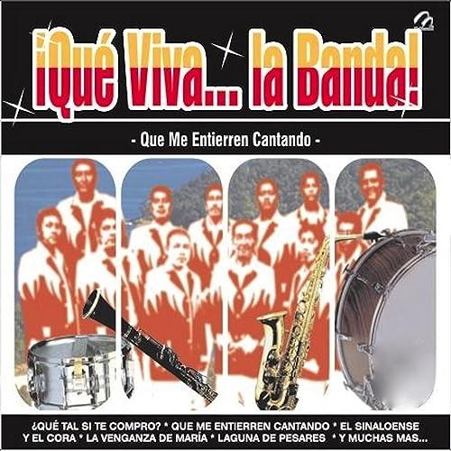 ¡Que Viva... La Banda!