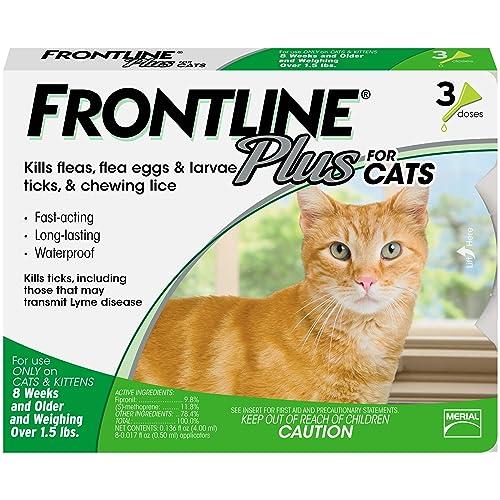 Cat Lice Amazon