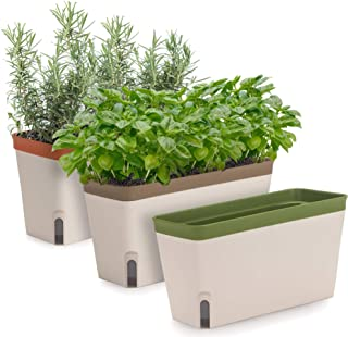 Amazing Creation Windowsill Herb Planter Box, Set of 3, Rectangular Self Watering Indoor Garden for Kitchens, Grow Plants,...
