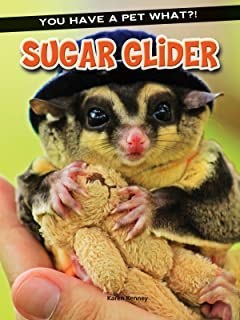 Sugar Glider (You Have a Pet What?!)