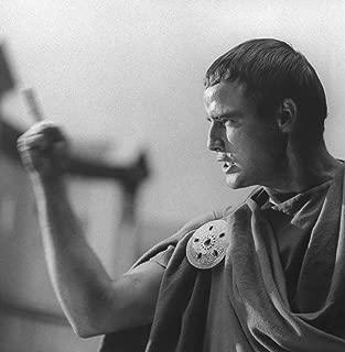 Marlon Brando Julius Caesar Poster Art Photo Hollywood Movie Posters Photos 12x12