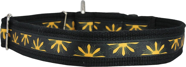 Organic Cotton Web Adjustable Dog Collar 2 Sizes Medium to XXLarge, Yellow Flowers Pattern (Medium Large  14 20 )
