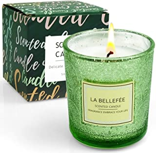 LA BELLEFÉE Scented Candle, Aromatherapy Candles Gift Set,Natural Soy Wax Candle,Cedar Fragrance,for Winter, Wedding, Rela...