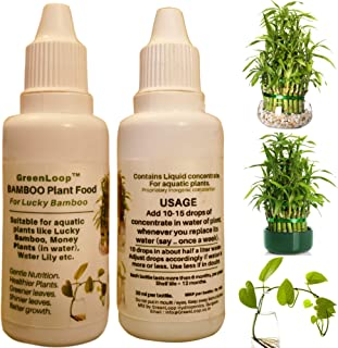 GreenLoop - Bamboo Plant Food (& for Money Plants) - Liquid Fertilizer for Aquatic Plants (in Water)