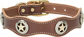 lone star dog collar