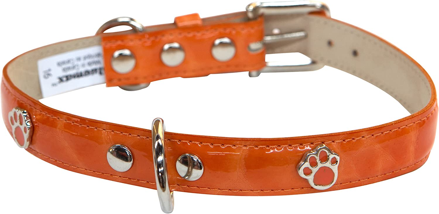 blueemax Italian Synthetic Turtle Shell Print Dog Collar with Paw Stud, 3 4Inch by 12Inch, orange