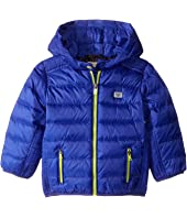 Armani Junior - Down Puffer with Hood (Infant)