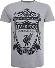 Liverpool FC LFC Mens Grey Marl Tee Official