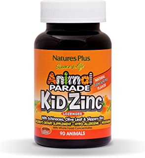NaturesPlus Animal Parade Source of Life KidZinc Lozenges - Tangerine Flavor - 90 Animal Shaped Tablets - Chelated Zinc Im...