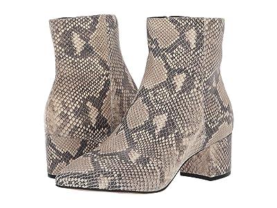 Dolce Vita Bel (Black/White Snake Print Leather) Women