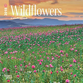Wildflowers 2018 7 x 7 Inch Monthly Mini Wall Calendar, Flower Outdoor Plant (Multilingual Edition)