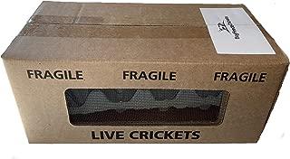 500 Live Medium (1/2) Crickets (acheta domesticus) by BuyFeederCrickets