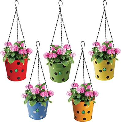 TrustBasket Dotted Round Hanging Basket - Set of 5 (Red, Yellow, Green, Orange, Blue)