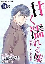甘く濡れる嘘~結婚という名の復讐~ : 14 (ジュールコミックス)
