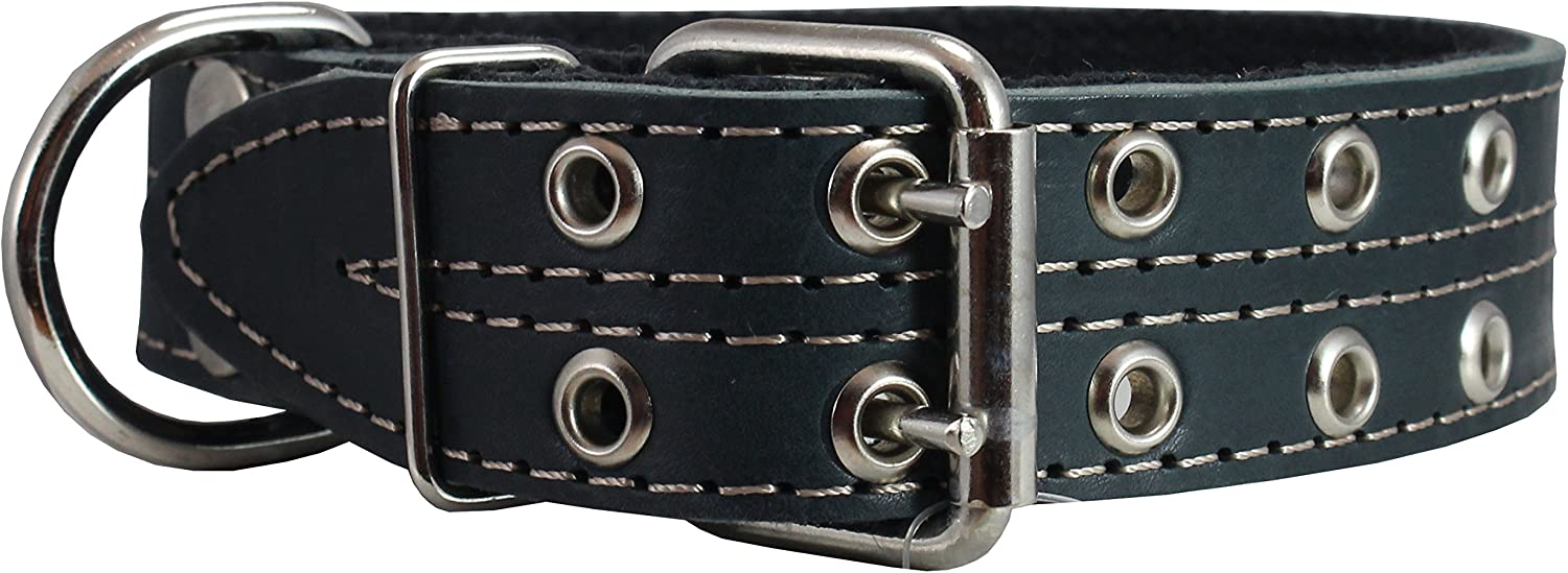 Genuine Leather Now on sale Dog Ranking TOP9 Collar Padded Black 1.5