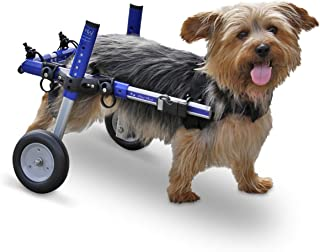 Best wheelchair for small dog Reviews