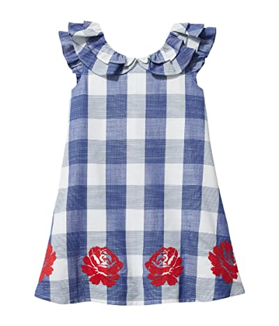 Janie and Jack Gingham Embroidered Dress (Toddler/Little Kids/Big Kids)