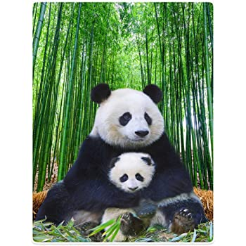 "Super Soft Warm Blankets Sofa Bed Throw Cute Panda Mom and Child Bamboo Animal 50"" x 80"""