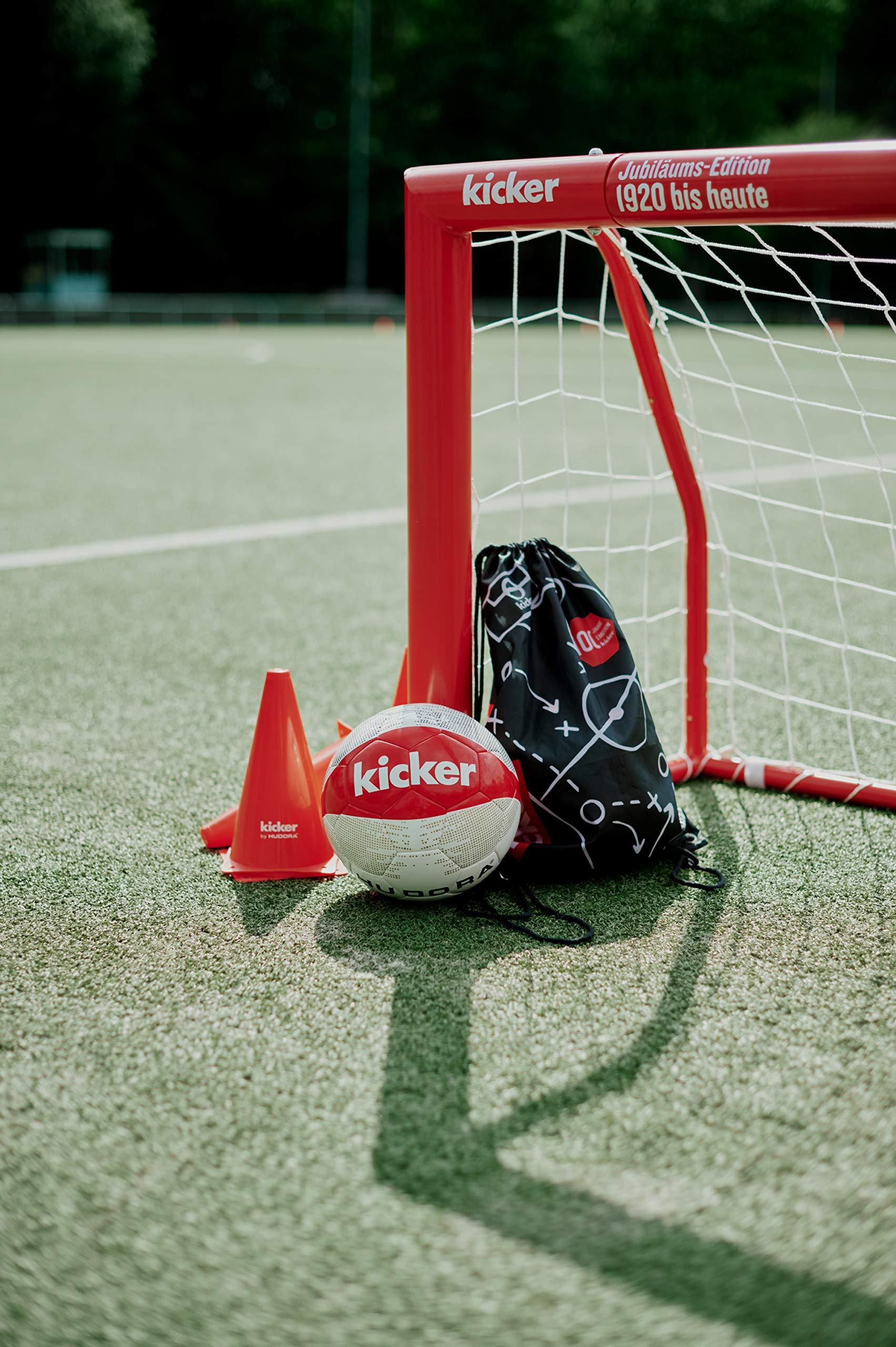 Hudora Fußballtor Expert 120 Edition | Garten Fußball-Tor aus ...