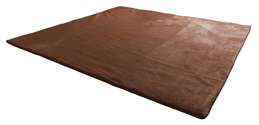 ムス右レビューmofua ラグ はずせて洗える着せ替え低反発ラグ (厚み2cm 約1.5畳) 130×190cm ブラウン 49393106