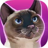 CatHotel - Prenditi cura di teneri gatti, coccolali e gioca con loro.
