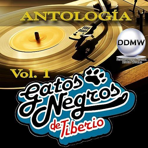 Carmenza by Tiberio Y Sus Gatos Negros on Amazon Music ...