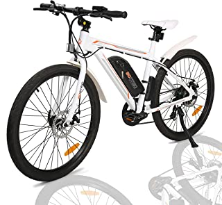ECOTRIC Electric City Bicycle Travel 26