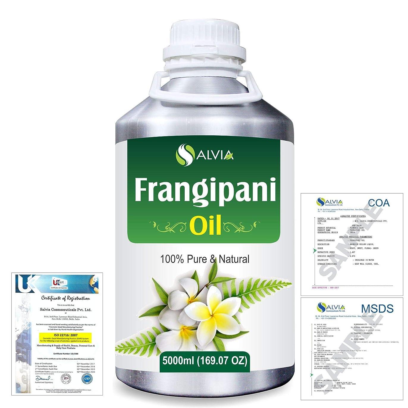 以上ポーチ弱めるFrangipani (Plumeria Alba) 100% Natural Pure Essential Oil 5000ml/169fl.oz.