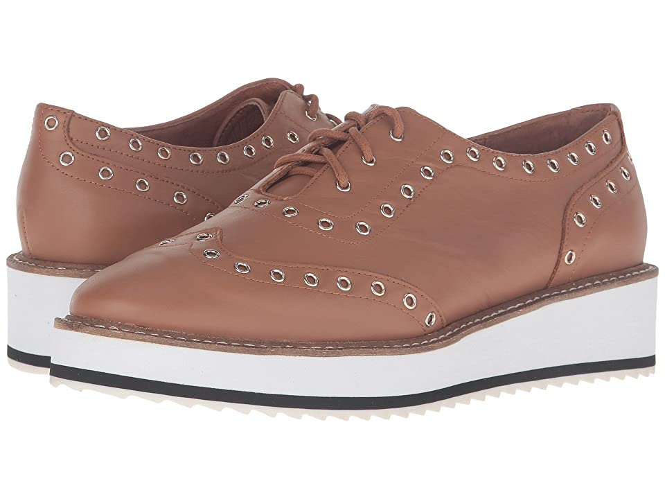 Shellys London Winchester (Tan) Women