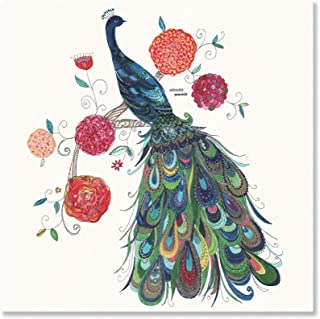 Oopsy Daisy Canvas Wall Art Painted Peacock by Kim Anderson, 18 by 18-Inch