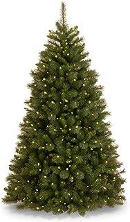 National Tree Rocky Ridge Pine Tree, Green