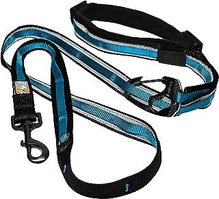 Kurgo Quantum (TM) handsfree hundkoppel för löpning, promenader eller vandring och reflekterande hundkoppel med justerbart...