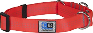 "Canine Equipment 1"" Technika All Webbing Martingale Dog Collar, Large, Orange"